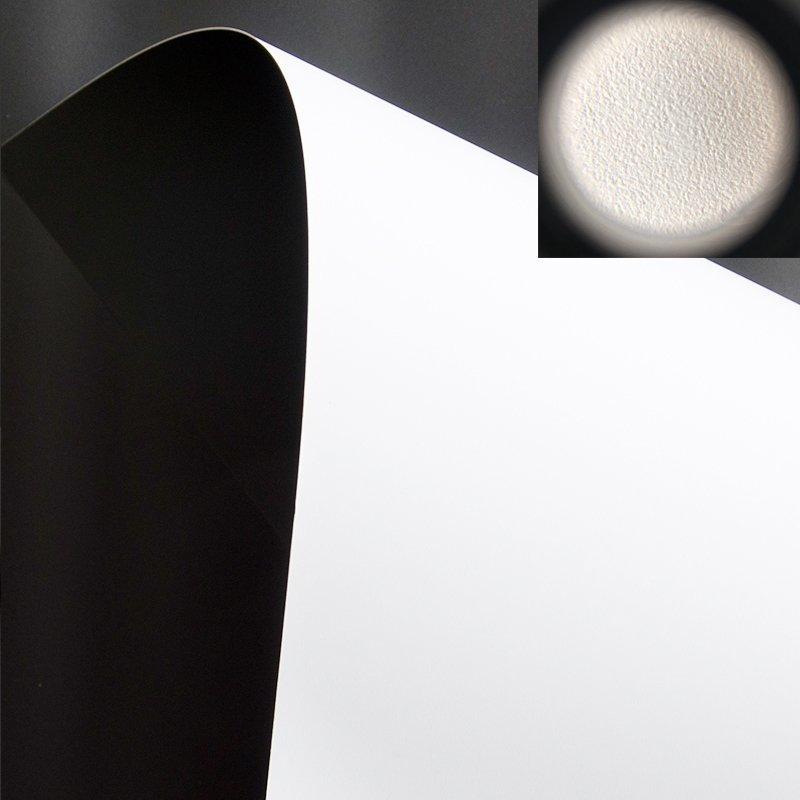 PET 4K Matte White Fabric WG1 Pro